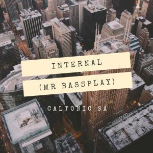 DOWNLOAD Caltonic SA – Internal (Mr Bassplay) – ZAMUSIC