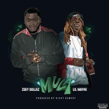 Zoey Dollaz – Mula (Remix) Ft. Lil Wayne, Zoey Dollaz, Mula (Remix), Lil Wayne, mp3, download, mp3 download, cdq, 320kbps, audiomack, dopefile, datafilehost, toxicwap, fakaza, mp3goo