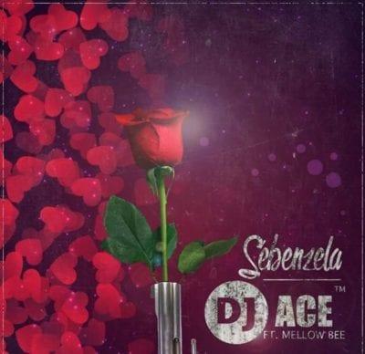 DJ Ace SA – Sebenza ft. Mellow Bee, DJ Ace SA, Sebenza, Mellow Bee, mp3, download, mp3 download, cdq, 320kbps, audiomack, dopefile, datafilehost, toxicwap, fakaza, mp3goo
