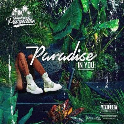 PalmTree Paradise – Paradise In You [ALBUM], PalmTree Paradise, Paradise In You, download, cdq, 320kbps, audiomack, dopefile, datafilehost, toxicwap, fakaza, mp3goo zip, alac, zippy, album
