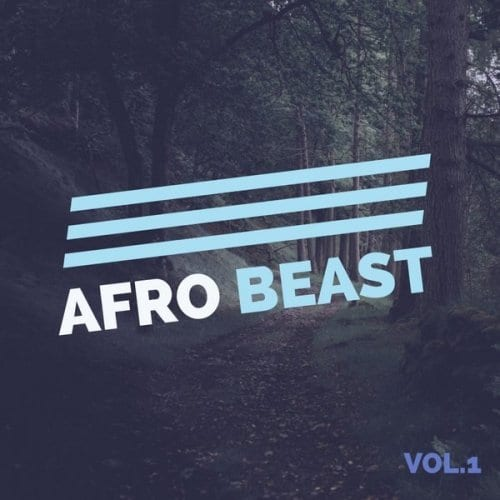 Various Artistes – Afro Beast Vol. 1 | MCT Luxury
