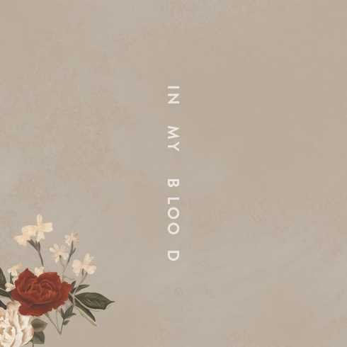 Shawn Mendes – In My Blood, Shawn Mendes, In My Blood, mp3, download, mp3 download, cdq, 320kbps, audiomack, dopefile, datafilehost, toxicwap, fakaza, mp3gooShawn Mendes – In My Blood, Shawn Mendes, In My Blood, mp3, download, mp3 download, cdq, 320kbps, audiomack, dopefile, datafilehost, toxicwap, fakaza, mp3goo
