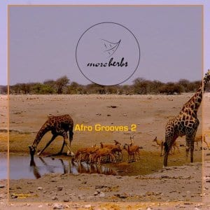 ALBUM: Various Artistes – Afro Grooves 2, Various Artistes, Afro Grooves 2, download, cdq, 320kbps, audiomack, dopefile, datafilehost, toxicwap, fakaza, mp3goo zip, alac, zippy, album
