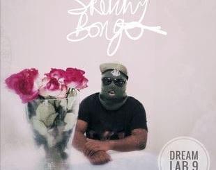 ALBUM: Sketchy Bongo – Dream Lab 9, ALBUM, Sketchy Bongo, Dream Lab 9, mp3, download, mp3 download, cdq, 320kbps, audiomack, dopefile, datafilehost, toxicwap, fakaza, mp3goo ,zip, alac, zippy, album