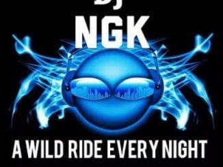 DJ NGK Deep Canic – Red Carpert (Afro Mix), DJ NGK, Deep Canic, Red Carpert, Afro Mix, mp3, download, mp3 download, cdq, 320kbps, audiomack, dopefile, datafilehost, toxicwap, fakaza, mp3goo