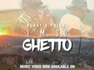 Beast, I'm So Ghetto, Tribal, mp3, download, datafilehost, fakaza, Afro House 2018, Afro House Mix, Deep House, DJ Mix, Deep House, Afro House Music, House Music, Gqom Beats