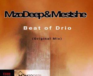 MzoDeep, Mestshe, Beat of Drio (Original Mix), mp3, download, datafilehost, fakaza, Afro House 2018, Afro House Mix, Deep House Mix, DJ Mix, Deep House, Afro House Music, House Music, Gqom Beats