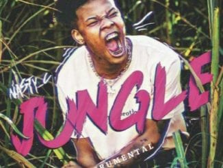 Nasty C , Jungle (Instrumental), mp3, download, datafilehost, toxicwap, fakaza, Jungle, Instrumental