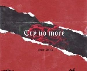 Stilo Magolide, Cry No More, Lyrics, Cry No More Lyrics, mp3, download, datafilehost, toxicwap, fakaza
