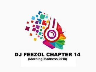 DJ FeezoL, Chapter 14 (Morning Madness 2018), mp3, download, datafilehost, fakaza, DJ Mix