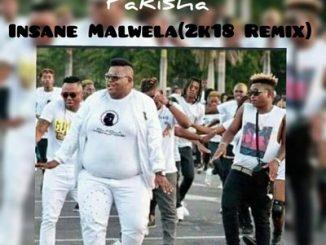 Dladla Mshungisi, Pakisha, Insane Malwela 2K18 Remix, Dj Tira, Distruction Boyz, mp3, download, datafilehost, fakaza, Gqom Beats, Gqom Songs, Gqom Music