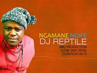 DJ Reptile, Ngamane Ngife, mp3, download, datafilehost, fakaza, Gqom Beats, Gqom Songs, Gqom Music