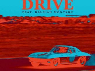 Black Coffee, Drive, David Guetta, Delilah Montagu, mp3, download, datafilehost, fakaza, Afro House 2018, Afro House Mix, Afro House Music