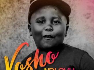 Ndlovu, Vosho ,Marrest, mp3, download, datafilehost, fakaza, Afro House 2018, Afro House Mix, Afro House Music