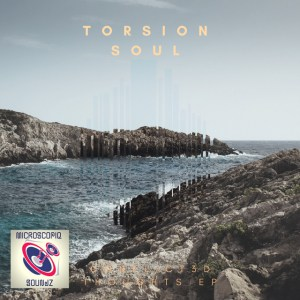 Torsion Soul, Conflict3D Thoughts, download ,zip, zippyshare, fakaza, EP, datafilehost, album, Afro House 2018, Afro House Mix, Afro House Music