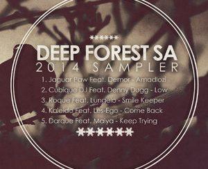 Various Artists, Deepforestsa 2014 Sampler, Deepforest, download ,zip, zippyshare, fakaza, EP, datafilehost, album, Afro House 2018, Afro House Mix, Afro House Music, Deep House Mix, Deep House, Deep House Music, House Music