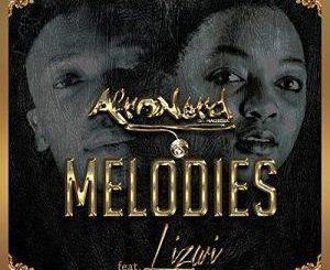 Afronerd, Melodies, Lizwi, mp3, download, datafilehost, fakaza, Afro House 2018, Afro House Mix, Afro House Music, House Music