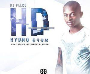 Dj Pelco, Hydro Gqom, download ,zip, zippyshare, fakaza, EP, datafilehost, album, Gqom Beats, Gqom Songs, Gqom Music