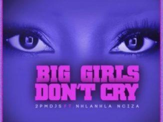 2PM DJs, Big Girls Don't Cry, Nhalnhla Nciza, mp3, download, datafilehost, toxicwap, fakaza