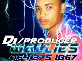 DJ Wallies, Woza Bang Gqom Mix, mp3, download, datafilehost, fakaza, Gqom Beats, Gqom Songs, Gqom Music, Gqom Mix