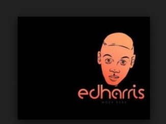 ED Harris, Gagashe (Buntu & Frootes Afro Remix), Pearl, mp3, download, datafilehost, fakaza, Gqom Beats, Gqom Songs, Gqom Music, Gqom Mix