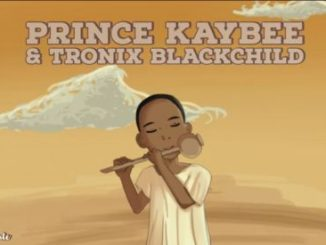 Prince Kaybee, Tronix BlackChild, Talking Flute (Original Mix), mp3, download, datafilehost, fakaza, Afro House 2018, Afro House Mix, Afro House Music, House Music