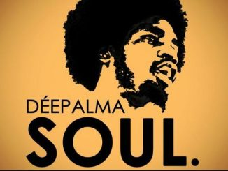 VA, Déepalma Soul, The Collection, download ,zip, zippyshare, fakaza, EP, datafilehost, album, Soulful House Mix, Soulful House, Soulful House Music, House Music