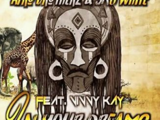 Afro Brotherz, SkyWhite, In Your Dreams, Vinny Kay, mp3, download, datafilehost, fakaza, Afro House 2018, Afro House Mix, Afro House Music, House Music