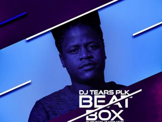 DJ Tears PLK, Beat Box Vol. 3 (Instruments), download ,zip, zippyshare, fakaza, EP, datafilehost, album, Afro House 2018, Afro House Mix, Afro House Music, House Music