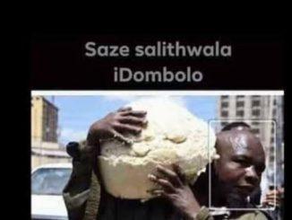 Dings, Sal'thwala Idombolo, mp3, download, datafilehost, fakaza, Afro House, Afro House 2018, Afro House Mix, Afro House Music, House Music