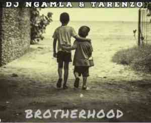 Dj Ngamla, Tarenzo, Brotherhood, mp3, download, datafilehost, fakaza, Afro House 2018, Afro House Mix, Afro House Music, House Music