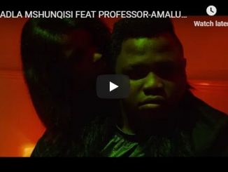 Dladla Mshunqisi, Amalukuluku, Professor, Video, mp3, download, datafilehost, fakaza, Gqom Beats, Gqom Songs, Gqom Music, Gqom Mix