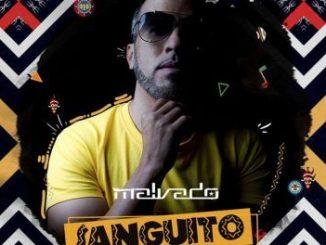 Dj Malvado, Sanguito (Afro Mix), Robertinho, Vado Poster, mp3, download, datafilehost, fakaza, Afro House, Afro House 2018, Afro House Mix, Afro House Music, House Music