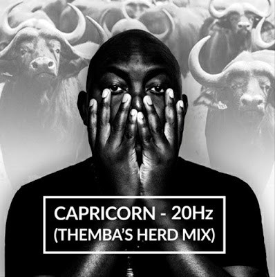 DOWNLOAD Capricorn – 20Hz (Themba's Herd Mix) – ZAMUSIC