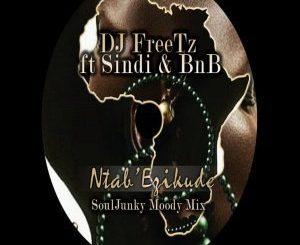 DJ Freetz, Ntab' Ezikude (SoulJunky Moody Remix), Ntab' Ezikude, SoulJunky, mp3, download, datafilehost, fakaza, Afro House, Afro House 2018, Afro House Mix, Afro House Music, Afro Tech, House Music