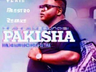 Dladla Mshunqisi, Pakisha (Plate Maestro Remake), Plate Maestro, Pakisha, mp3, download, datafilehost, fakaza, Afro House, Afro House 2018, Afro House Mix, Afro House Music, House Music