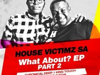 House Victimz, KingTouch - Stomp It, mp3, download, datafilehost, fakaza, Deep House Mix, Deep House, Deep House Music, Deep Tech, Afro Deep Tech, House Music
