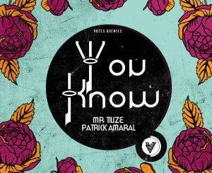 Mr. Tiuze, You Know (Original Mix), Patrick Amaral, mp3, download, datafilehost, fakaza, Afro House, Afro House 2018, Afro House Mix, Afro House Music, House Music