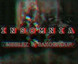 Nibblez, SaxoGroup, Insomnia (Afro Tech), mp3, download, datafilehost, fakaza, Afro House, Afro House 2018, Afro House Mix, Afro House Music, Afro Tech, House Music