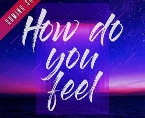 DJ Mshega, How Do You Feel, Ziyon, mp3, download, datafilehost, fakaza, Afro House, Afro House 2019, Afro House Mix, Afro House Music, Afro Tech, House Music