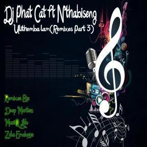 DOWNLOAD: DJ Phat Cat – Ulithemba lam (Zola Emoboys Drum n Bass Drag