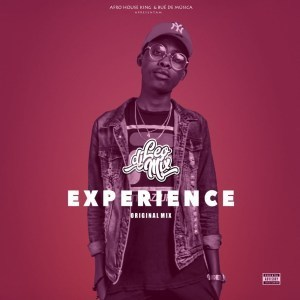 Dj Leo Mix, Experience (Original Mix), mp3, download, datafilehost, fakaza, Afro House, Afro House 2019, Afro House Mix, Afro House Music, Afro Tech, House Music