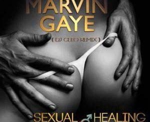 Marvin Gaye, Sexual Healing (Dj Cleo Amapiano Remix), mp3, download, datafilehost, fakaza, Afro House, Afro House 2019, Afro House Mix, Afro House Music, Afro Tech, House Music, Amapiano, Amapiano Songs, Amapiano Music