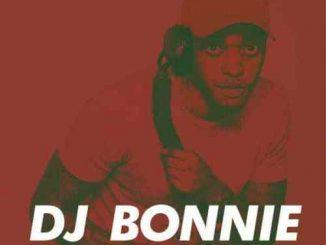 DJ Bonnie, 14K Appreciation Mix, mp3, download, datafilehost, fakaza, Afro House, Afro House 2019, Afro House Mix, Afro House Music, Afro Tech, House Music