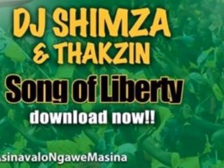 Dj Shimza, DJ Thakzin, Song Of Liberty, Vote ANC, mp3, download, datafilehost, fakaza, Afro House, Afro House 2019, Afro House Mix, Afro House Music, Afro Tech, House Music