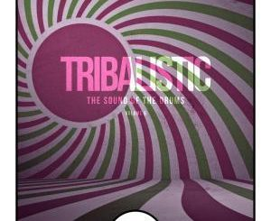 Tribalistic, Vol. 6, The Sound Of The Drums, download ,zip, zippyshare, fakaza, EP, datafilehost, album, Afro House, Afro House 2019, Afro House Mix, Afro House Music, Afro Tech, House Music