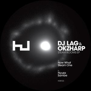 Download DJ LAG & Okzharp – Now What – ZAMUSIC