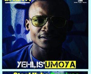 Shota, Yehlis'umoya, Chris Forman Revision Mix, mp3, download, datafilehost, fakaza, Afro House, Afro House 2019, Afro House Mix, Afro House Music, Afro Tech, House Music Fester,
