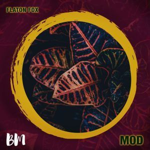 DOWNLOAD EP: DJ Flaton Fox – MOD – ZAMUSIC
