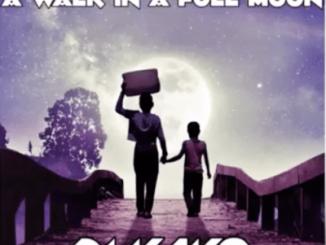 DJ Kayo, Africana, Original Mix, mp3, download, datafilehost, fakaza, Afro House, Afro House 2019, Afro House Mix, Afro House Music, Afro Tech, House Music